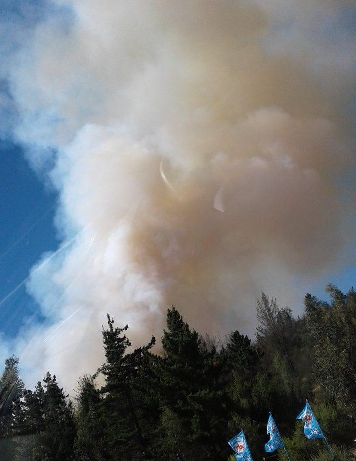 Alerta roja en Valparaíso por incendio forestal en Placilla