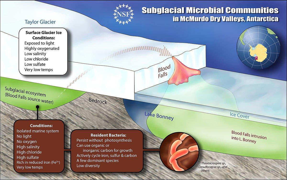 Ilustración que muestra la ubciación del lago subterráneo y cómo llega el agua hasta la superficie | Zina Deretsky | US National Science foundation (NSF)