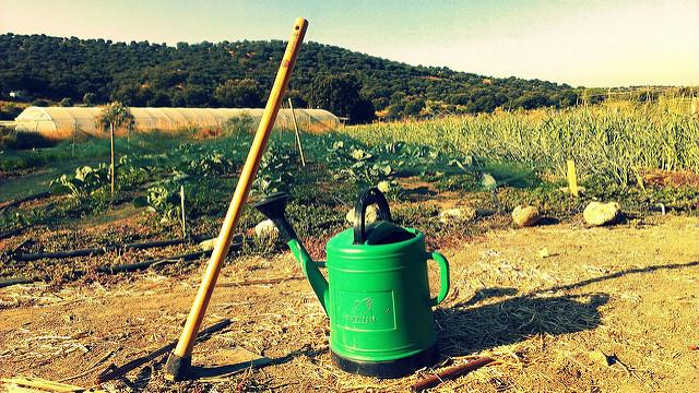 Tu Huerto Ecológico | Flickr (CC)