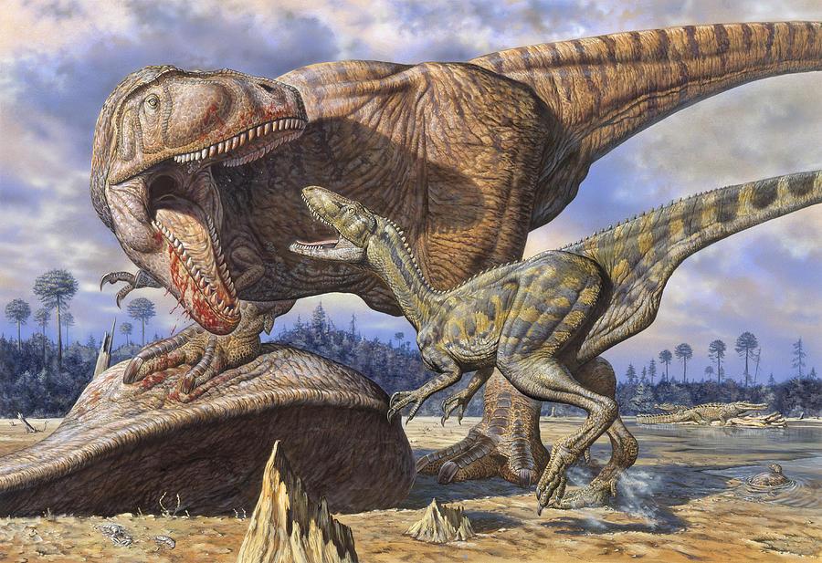 El dinosaurio de mayor tamaño es un Carcharodontosaurus