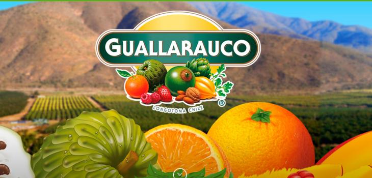 f2b69204c38c5 Coca Cola compra 100% de Guallarauco en  45 mil millones tras acuerdo con  Grupo Angelini   Economía   BioBioChile