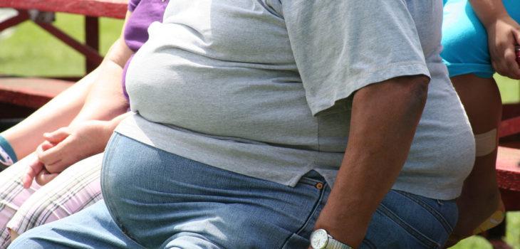 Las consecuencias de la obesidad en los riñones