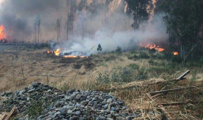 Onemi ordena evacuar sector Coihue Painemal en La Araucanía por incendio forestal