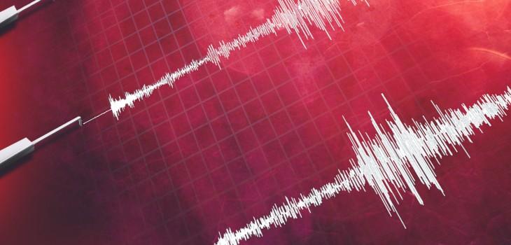 Sismo de magnitud 7,4 se registra en Nueva Zelanda y emiten alerta de tsunami