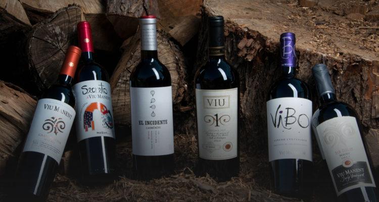 Una cara etiqueta de vino: viña deberá pagar $380 millones a artista por uso no autorizado de obra