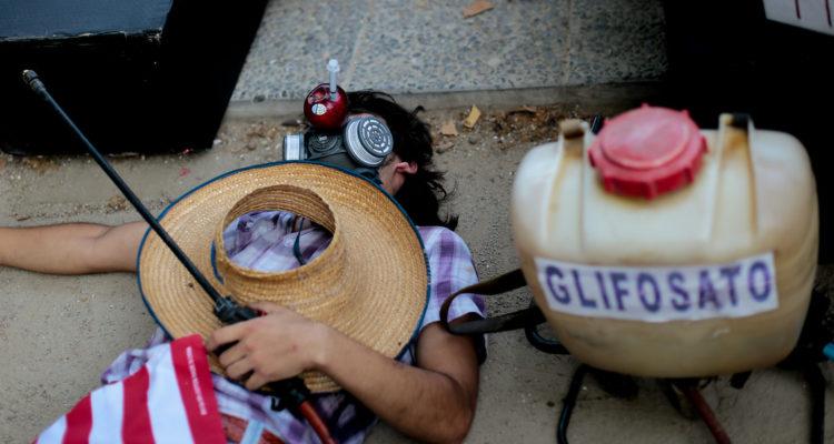 Comité por la Defensa de Paine acusa uso de Glifosato en la comuna y llaman a prohibir su uso