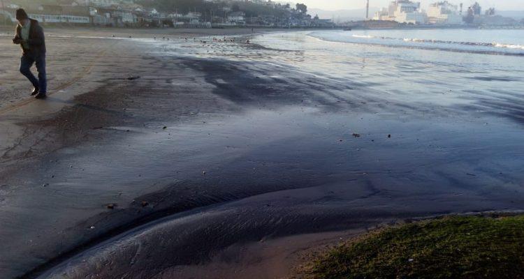 Casi 100 varamientos de carbón se han registrado en sólo 4 meses en Playa Ventanas de Puchuncaví
