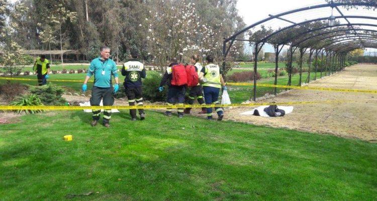 Dos trabajadores mueren electrocutados cuando podaban árboles en Chimbarongo