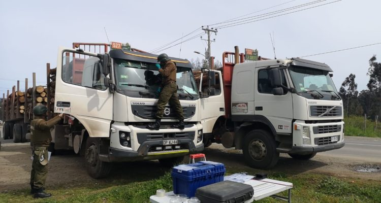 Presidente de Corma llama a la autoridad a restablecer el orden tras ataque a conductor en Cañete