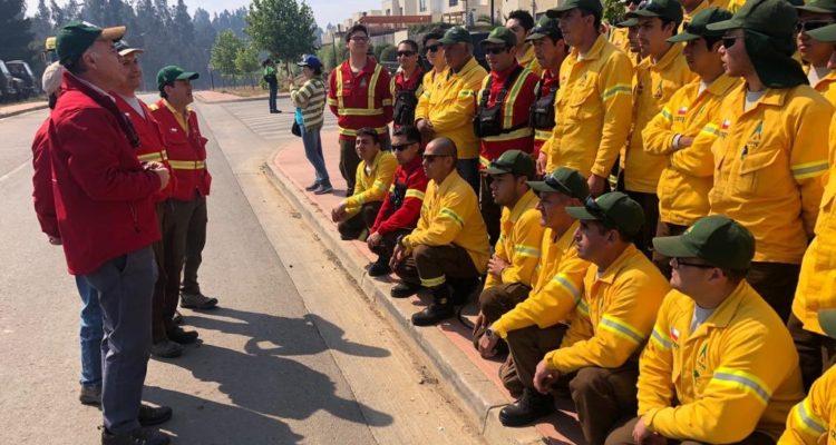 Ministro Walker confirma que van 2.500 hectáreas afectadas por incendios forestales en Valparaíso