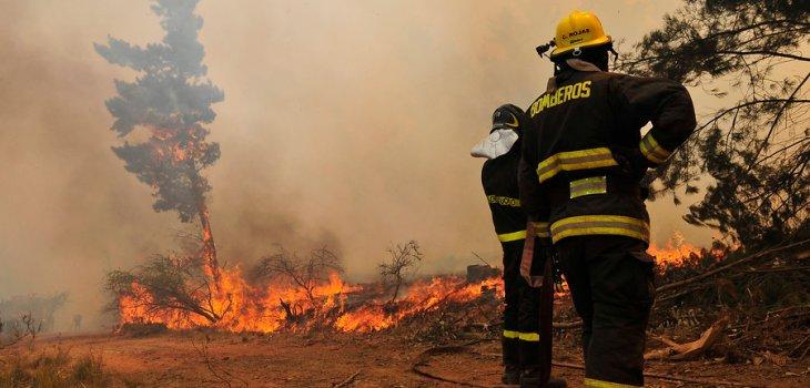 Onemi declara Alerta Amarilla por incendios forestales en La Araucanía