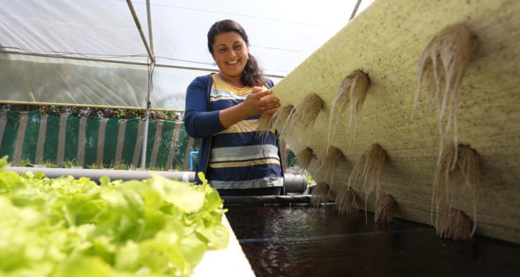 Riego y preservación del agua: Indap dispone incremento de presupuesto y enfoque sustentable