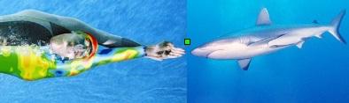 Speedo Fastskin y Tiburón   Wikipedia