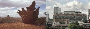 Edificio ecológico y termitas   Wikipedia