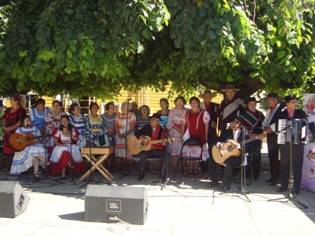 Conjunto de Proyección Folclórica Amay / Comunicado de Prensa