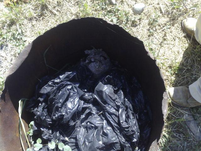 Cráneo en basurero de Cementerio Municipal | Manuel Durán Basualto