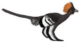 Los colores de un dinosaurio