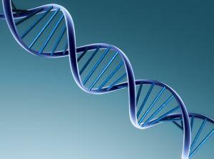 Representación del ADN | Clix en Stock.xchng