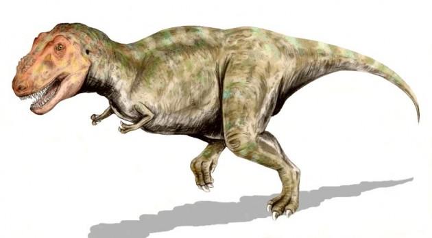Tyrannosaurus | Wikipedia