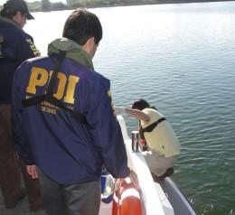 Toma de muestras en río de Valdivia
