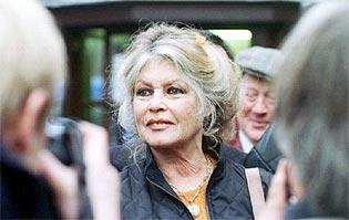 Brigitte Bardot | Wikipedia
