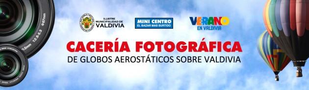 http://www.munivaldivia.cl/