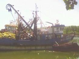 """Embarcación """"Don Borney"""""""