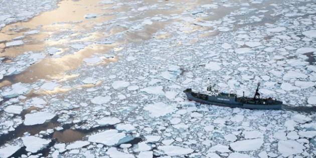 Yushin Maru | Sea Shepherd