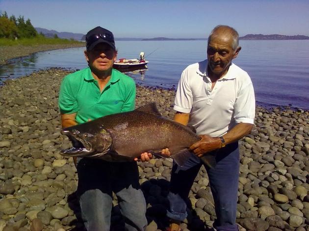 Gran pez capturado en el Lago Ranco  | Hector Gómez