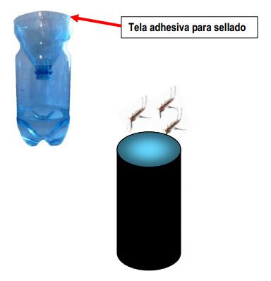 Trampa para Zancudos | Municipalidad de Talcahuano