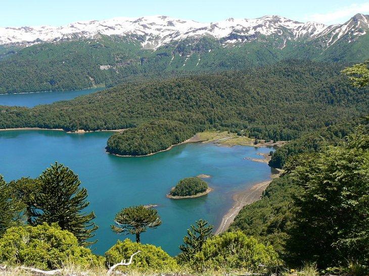 Parque Nacional Conguillío, Victoria, Chile | Wikipedia