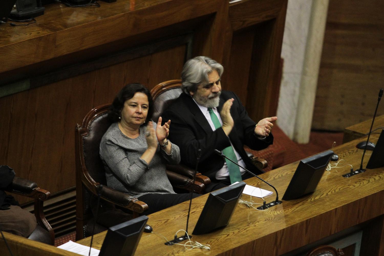 Homenaje Cámara de Diputados (C)