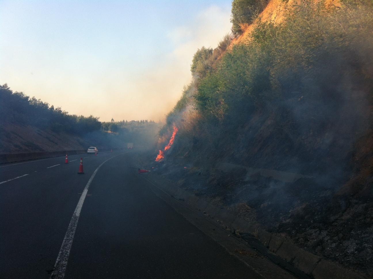Incendio forestal | Constanza Reyes (RBB)