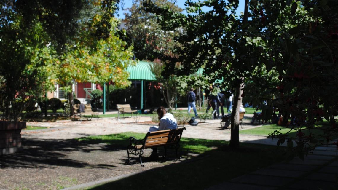 Foto Referencial  Facultad de Agronomía PUCV Quillota