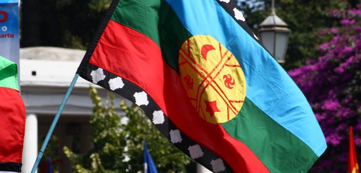 ARCHIVO | Bandera mapuche