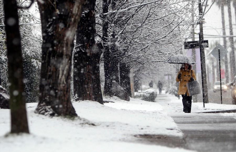 Este domingo comenzar el invierno en chile for Imagenes de patios de invierno