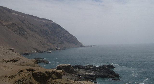 lynn tour Arica