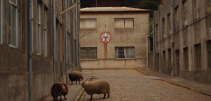 Fábrica Bellavista Tomé, CMN (c)