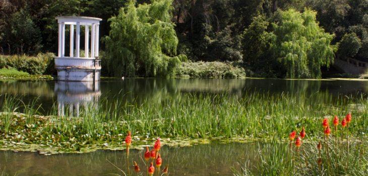 Lanzan proyecto de restauraci n para el jard n bot nico de for Jardin botanico vina