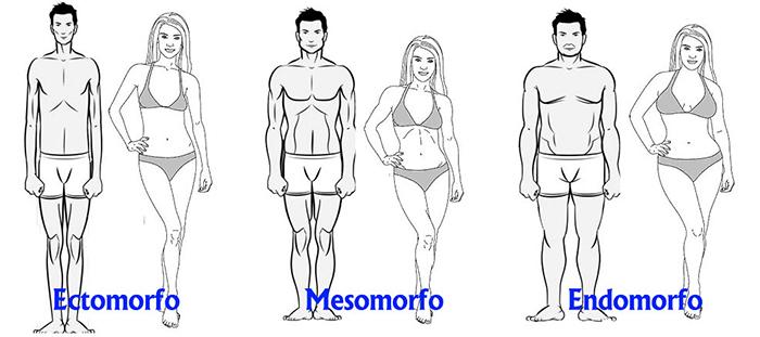 Aprende A Bajar O Subir De Peso Según Tu Tipo De Cuerpo