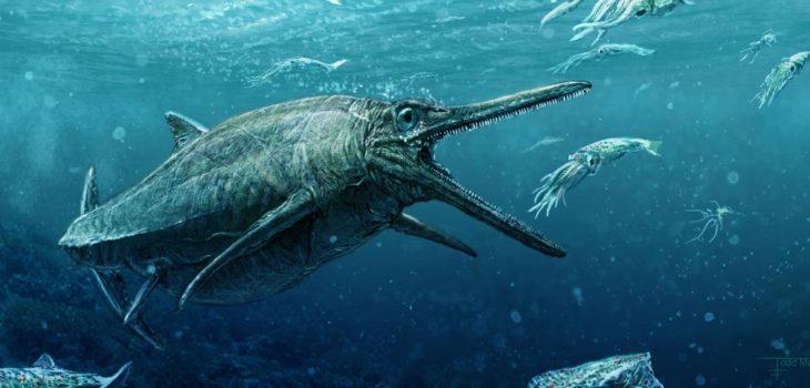 Ilustración de  ictiosaurios gentileza de  la Universidad de Edimburgo