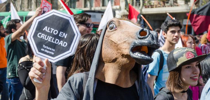 Marcha Animal Libre | Flickr