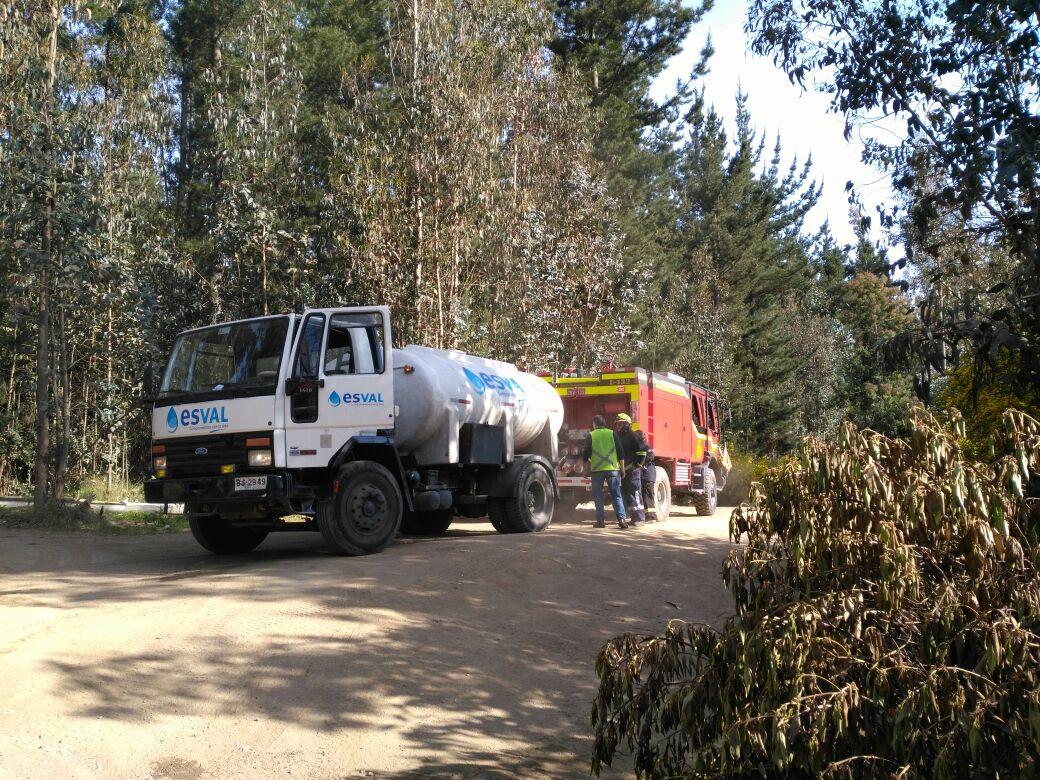 Incendio forestal sector Fundo El Llano Valparaíso