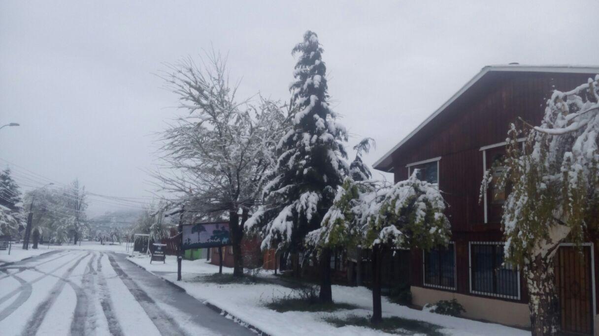Inusual nevazón primaverá sorprendió a habitantes de Lonquimay