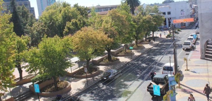 Municipio de Los Ángeles
