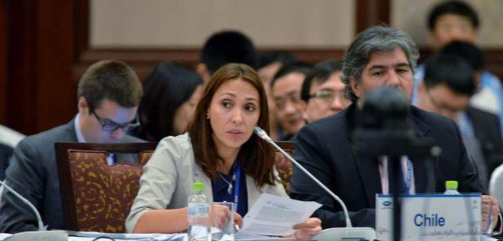 Paulina Nazal | Direcon