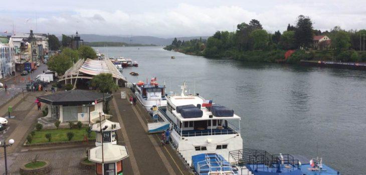 Valdivia | Carolina Mardones | BBCL