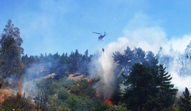 Incendio afectó a cerros de comuna de Concón