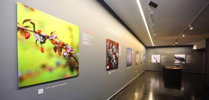 Exposición Del Agua