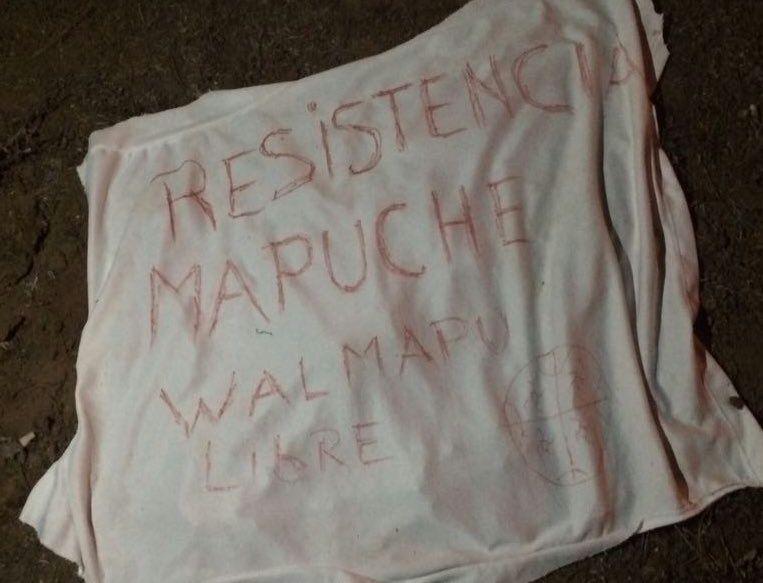 lienzo con consigna mapuche